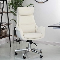 BEST WITH BACK SUPPORT MID CENTURY SWIVEL DESK CHAIR Summary