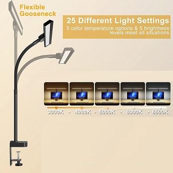 LED Desk Lamp, KARY 24 Watts O